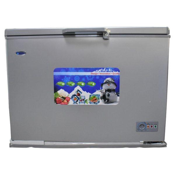 DELTA 300L - Congelateur DCF300SLV - 12 Mois Garantie